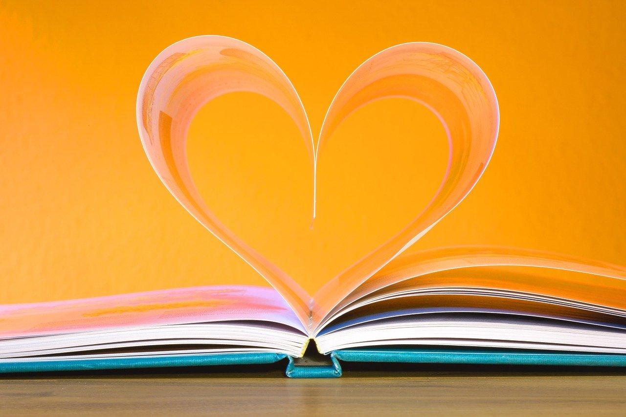book, education, school